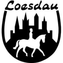 Доставка товаров из Loesdau    за 7 дней - VGExpress