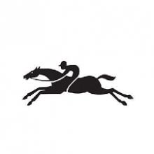 Доставка товаров из Longchamp  за 7 дней - VGExpress
