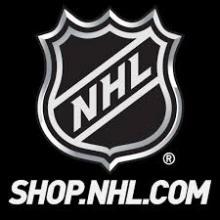 Доставка товаров из NHLstore   за 7 дней - VGExpress